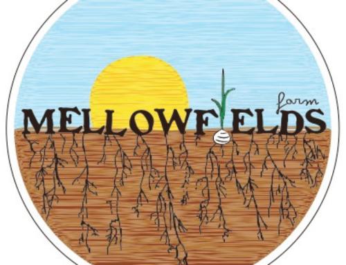 Mellowfields